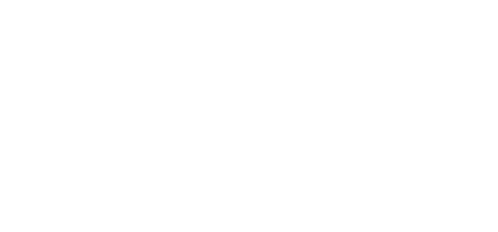 Bushido Martial Arts
