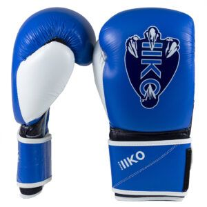 Drako Talon Sparring Gloves